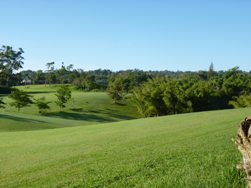 Manchester_Golf_Club_Jamaica